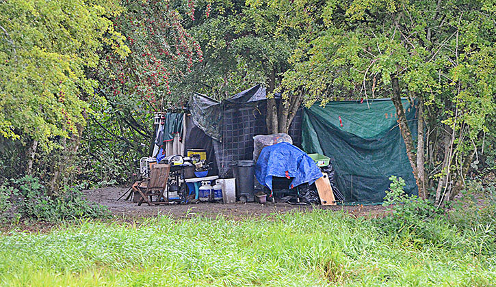 Homeless camps dotted Nicomekl Park through the middle of 2016.— Image Credit: Langley Advance Files